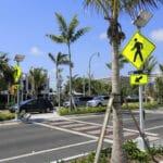 Tampa pedestrian killed