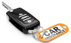 A Guide to Florida Auto Insurance<br>Requirements & Laws