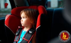 PSA: Don't Leave Your Kids or Pets in the Car in Florida (Even in the Winter)